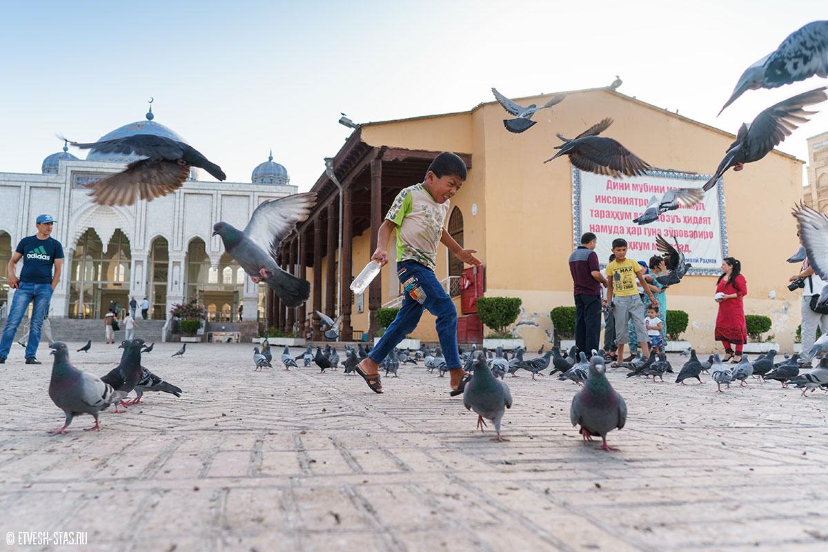 Мальчик на площади перед мечетью играет с голубями